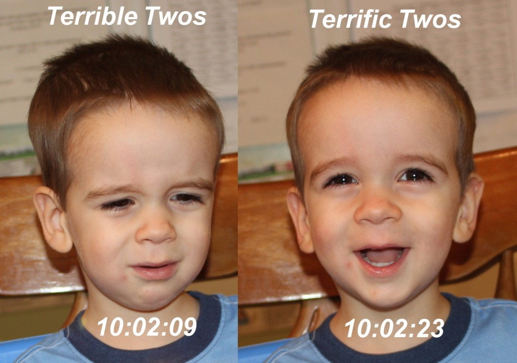 Terrible Twos vs Terrific Twos